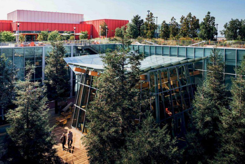 Le toit écologique du campus facebook