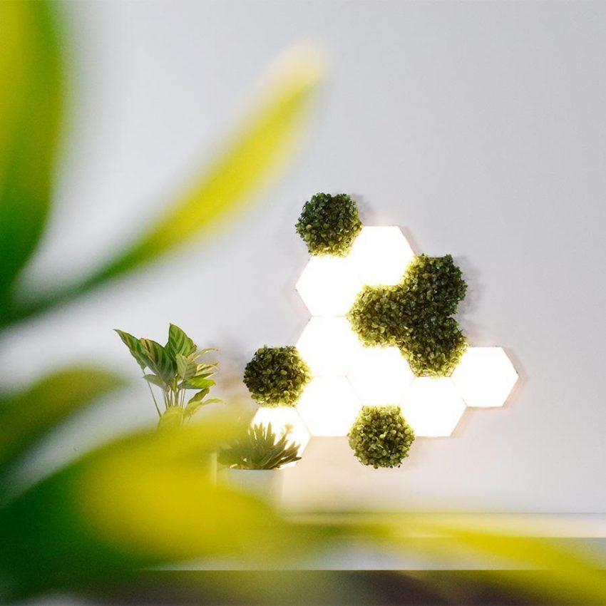 Lampes et végétaux modulables