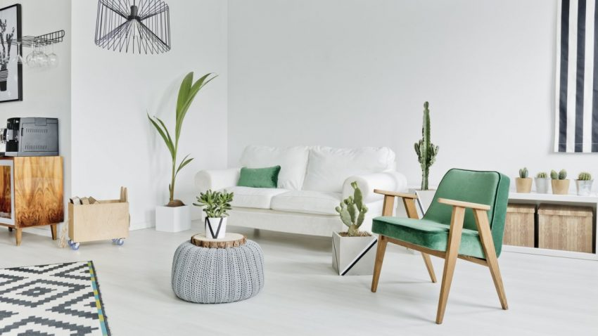 Décor minimaliste avec feuilleul vintage coloris vert
