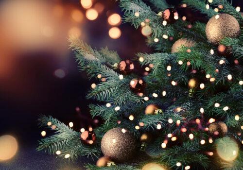 Une décoration de Noël éco-friendly